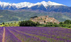 provence-003